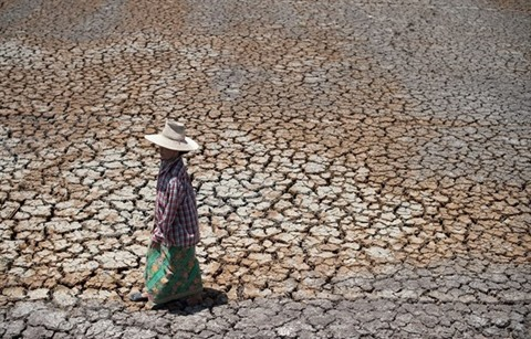 Thailand Prepares for Severe Drought with Huge Water Reservoirs