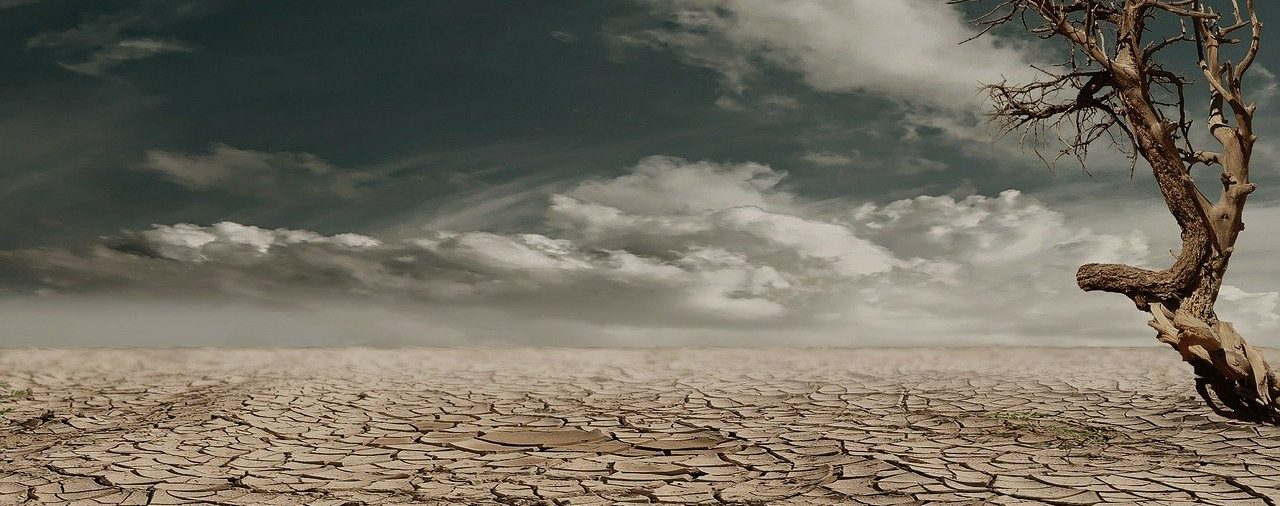 """Tribune du Monde """"Without decisive action, the chronic lack of water will not be solved""""."""